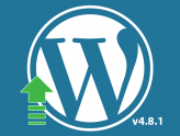 WordPress update 4.8.1